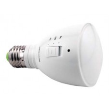 AgroLED 4 Watt Green Flashlight/Lamp AC/DC Rechargeable