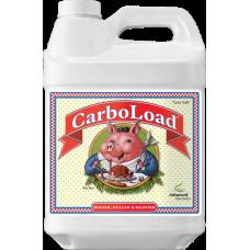 CarboLoad 10L