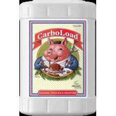CarboLoad 23L